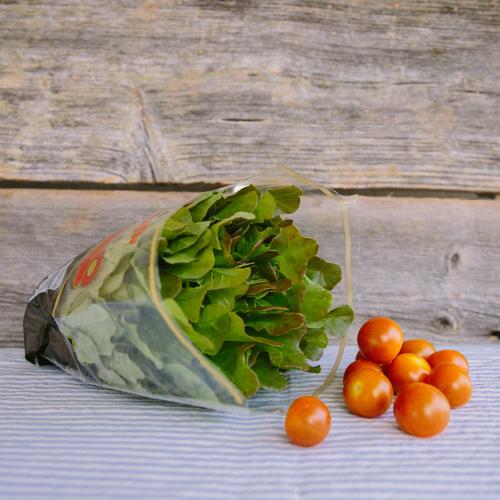 Grönsaker<br />